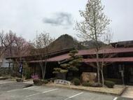 Ot174292.JPG(ゴールデンウイークに桜が満開)