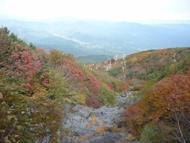 Kouyou2.jpg(御嶽山と紅葉)