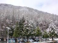 Springsn.jpg(4月の雪)