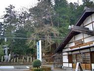 Satomiya.jpg(今日の里宮店)