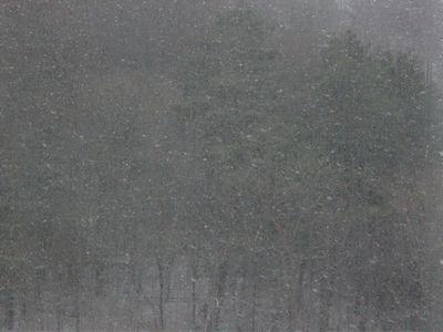 2018.3降雪.jpg