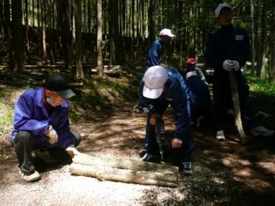 Shokuju1.jpg(中学生の育林・植樹学習)