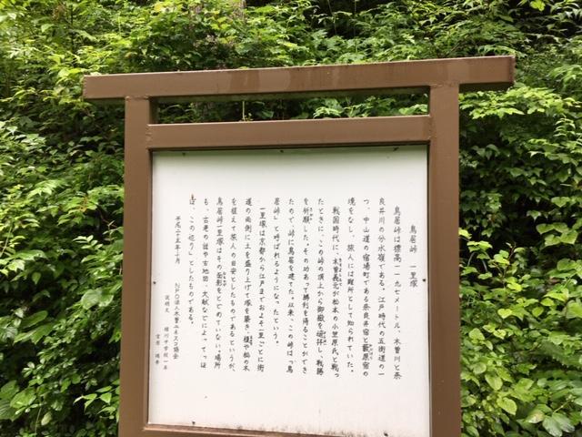 hino_blog_20190718_torii_2.JPG