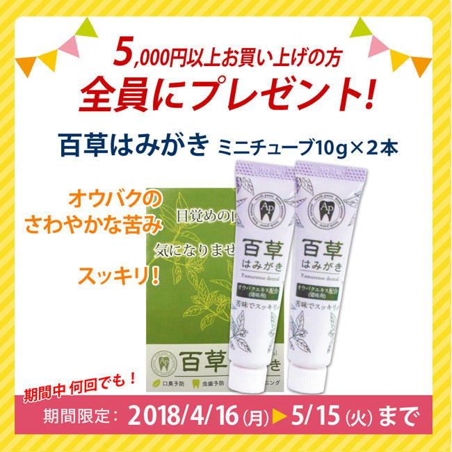5000円以上お買い上げプレゼント11/16~