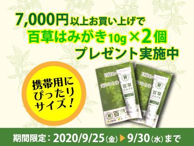 shopnews_202009_hamigaki_present.jpg