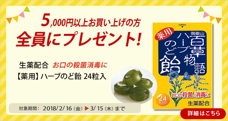 5000円以上お買上プレゼント